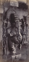 Madura. The Great Pagoda [Minakshi Sundareshvara Temple]. Carved pillar in the Thousand Pillar Portico [Airakkal Mandapa] 212219